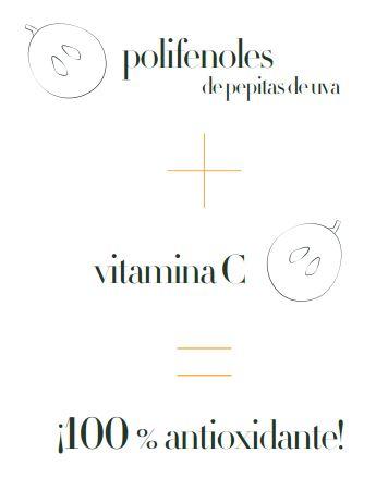 caudalie-PolyphenolC15